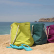 Summer holiday � three vivid bags on the seacoast — Stock Photo