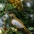 Christmas golden bird decoration — Stock Photo #18141631