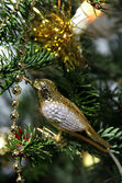 Christmas golden bird decoration — Stock Photo