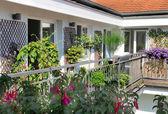 Terrasse mit blumen — Stockfoto