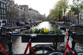 Amsterdam bicycle — Stock Photo