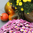 Halloween decorations with pumpkin and lot of flowers — Stock Photo #34087071