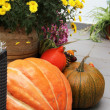 Halloween decorations with pumpkin and lot of flowers — Stock Photo #34087111