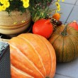 Stock Photo: Halloween decorations with pumpkin and lot of flowers