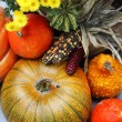 Halloween decorations with pumpkin and lot of flowers — Stock Photo #34087165