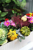 Fall terrace decorations with lot of flowers and other decor veg — Stock Photo