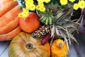 Fall terrace decorations with pumpkin and lot of flowers — Stockfoto