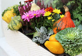 Fall terrace decorations with pumpkin — Stock Photo
