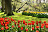 Beautiful park in spring with pond — Stock Photo