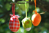 Easter eggs hanging on the tree  — Stock Photo