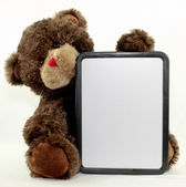 Brown Bear Dry Erase Board — Stock Photo