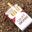 Quit Smoking Box — 图库照片