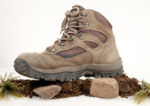 Hiking Boot On Dirt And Rocks — Stock Photo