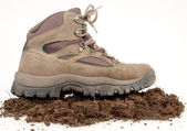 Hiking Boot On Dirt — Stock Photo