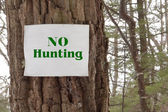 No Hunting — Stock Photo