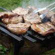 Barbecue Pork chops — Stock Photo #12646256