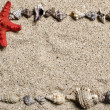 Frame of tarfish and shells on a sand beach — Stock Photo