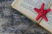 Summer reading — Stock Photo