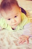 Bebek portre — Stok fotoğraf