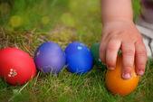 Egg hunt — Stock Photo