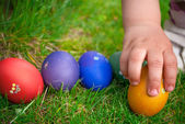 Easter eggs hunt — Stockfoto