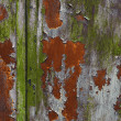 Grunge painted metal texture or background — Stock Photo #13696037