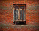 Window on aged brick wall wreathed with dried ivy — Stock Photo