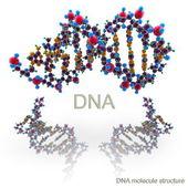 Dna'ın molekül yapısı — Stok fotoğraf