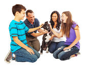 Happy family welcoming a new dog — Stock Photo