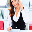 Ceo woman - Stock Photo