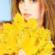 Royalty-Free Stock Photo: Autumn bouquet