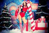 Trees Christmas — Stock Photo