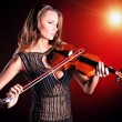 fiddle — Stock Photo #24533435