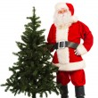 Fir-tree — Stock Photo #35950005