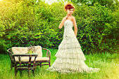 Wedding bride — Stock Photo