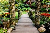 Paisajismo en el jardín — Foto de Stock