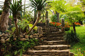 Landscaping in the garden. The path in the garden asian style — Stock Photo
