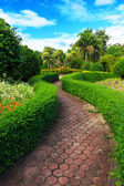 Pathway in garden design. — Stock Photo