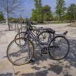 Bicycles — Photo #12043156