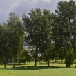 Stockfoto: Golf course