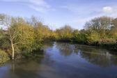 River avon warwick — Stock Photo