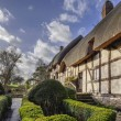 Thatched cottage — Stockfoto