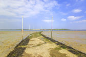 Thames estuary — Stock Photo