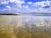 ビーチ — ストック写真