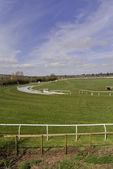 Racecourse — Stock Photo