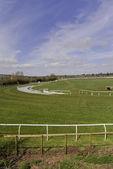 Racecourse — Stock Photo