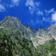 The ecrins valley the french alps — Stock Photo #27532221