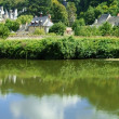 Loire — Stock Photo