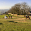 Stock Photo: Cleeve hill