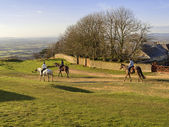 Cleeve hill — Stock Photo